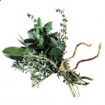 herb1-150x150[1]