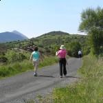 walk-day-1