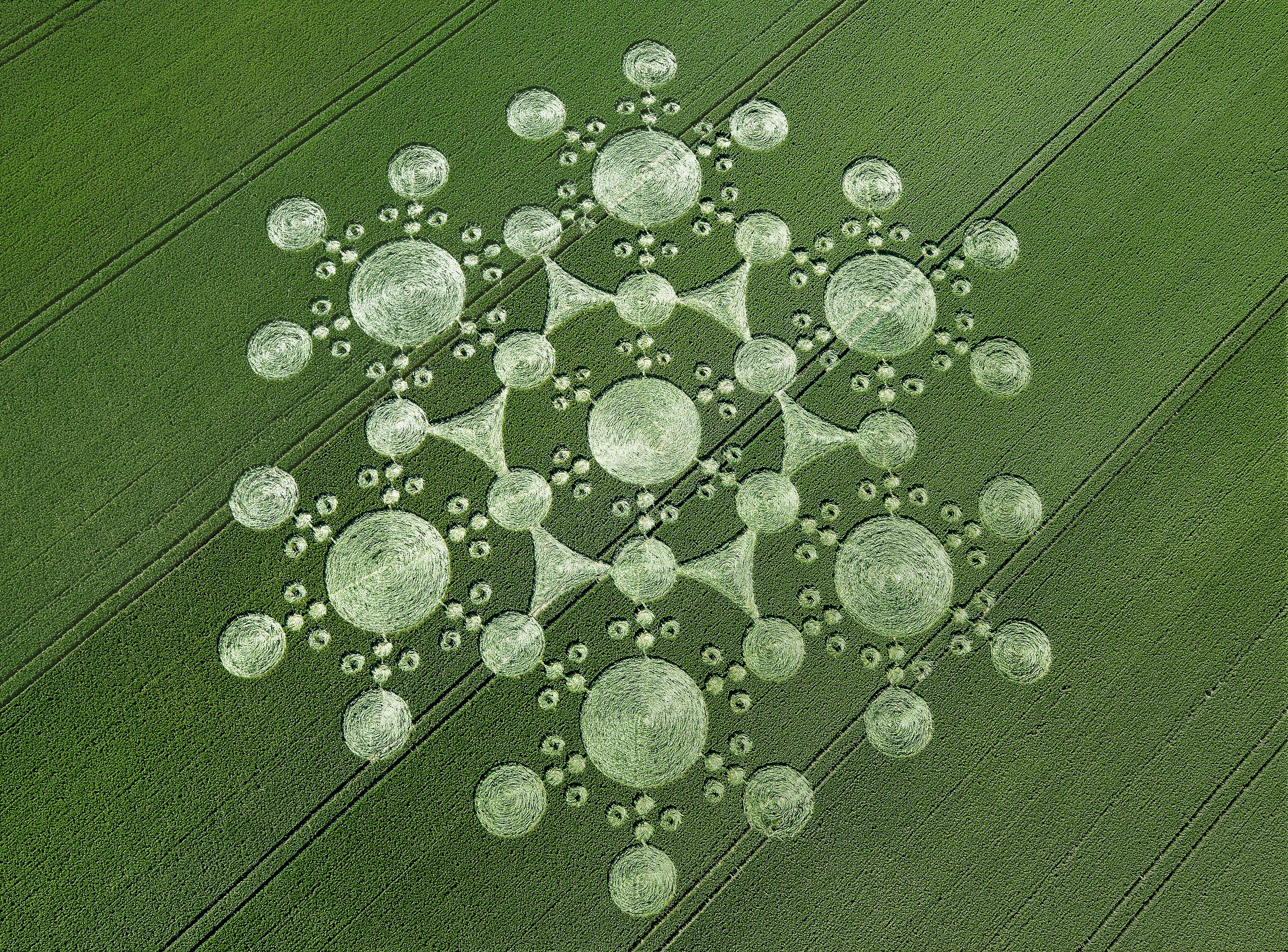 Crop Circle, Photo caption_Steve Alexander