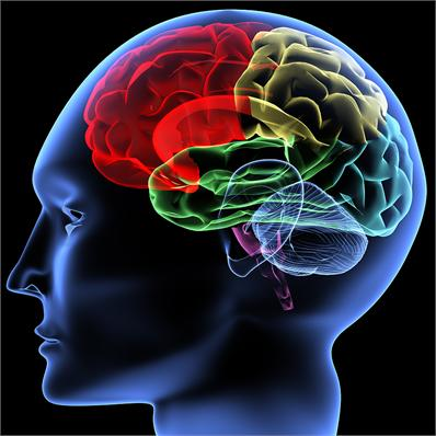 brainwave optimisation technologies and training