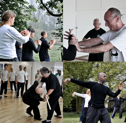 tai chi tracher training