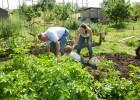 Permaculture workshop Dublin