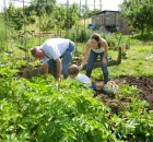 Permaculture workshop Dublin