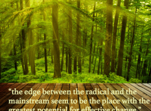 Radical Versus Mainstream