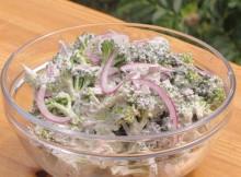 silverweed salad
