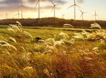 Sustainability in Ireland
