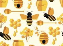 Bee Numbers US