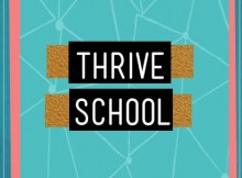 thrive school initiative