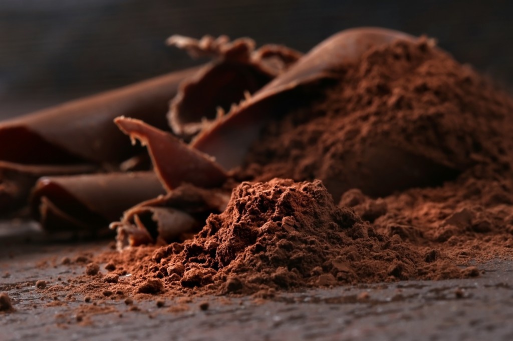 Dark chocolate shavings and sprinkled cocoa powder