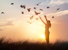 Woman praying and free bird enjoying nature on sunset background
