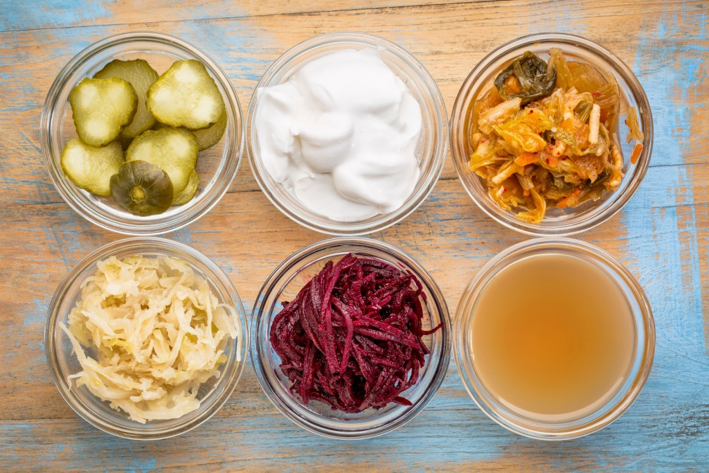 Autumn 2017 CNM Sneak Peek: Ferment Your Way to Optimal Health