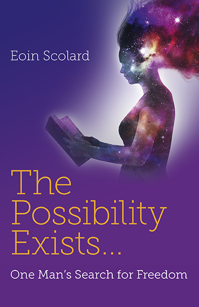 The Possibility exists book